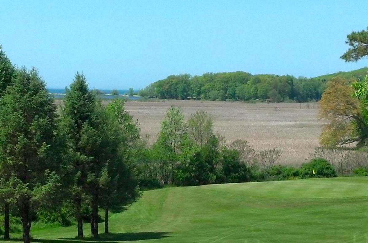 Springbrook Greens Golf Course Fair Haven